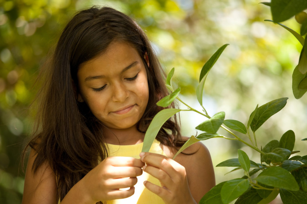 Make your environment healthier